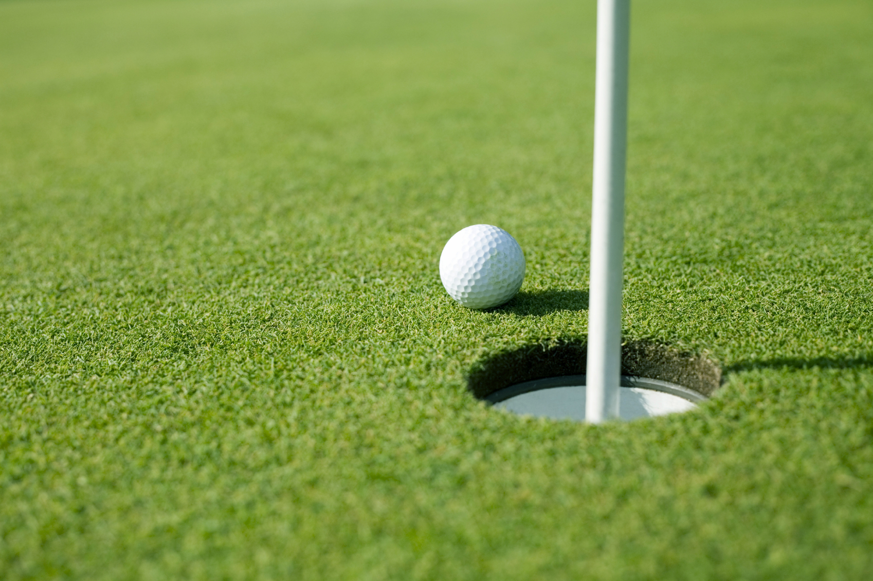 golf balls supplier in uae printing press dubai